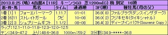 130825hak11s