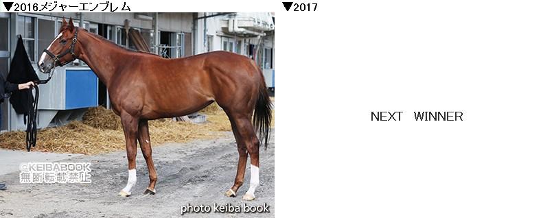 Nhkc1617
